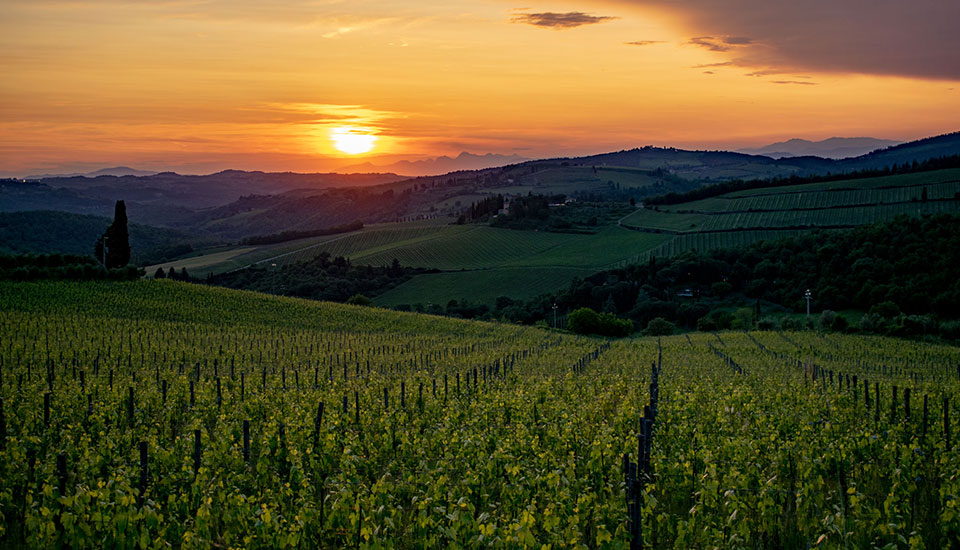 Slow Tour Tuscany - TUSCANY LANDSCAPES, CASTLES  & CHIANTI WINE DISTRICT